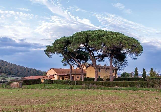 Agriturismo-Monte-la-Puglia