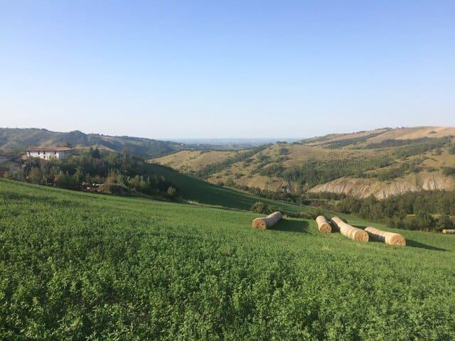Agriturismo-con-animali-La-Bizentina