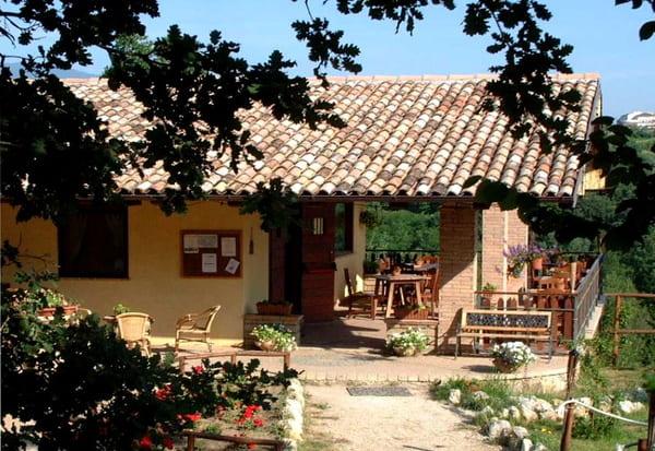 Ristorante-Agriturismo-Crete-Gialle-Lazio-dove-si-mangia-bene