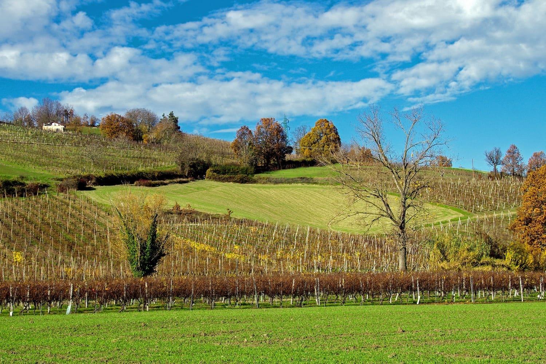 migliori-agriturismi-in-Emilia-Romagna