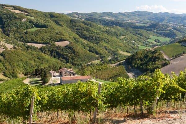 Agriturismo-Ca-Gianna-e-Borgorosso-a-Cesena
