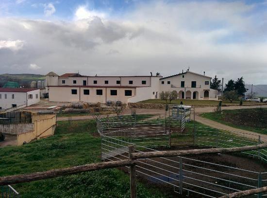Agriturismo-Masseria-Straziuso