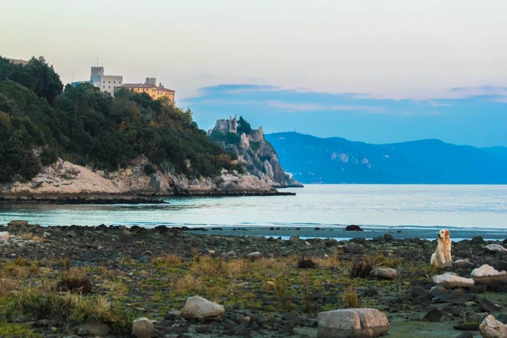 Agriturismo-Trieste