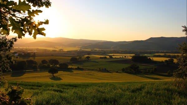 Agriturismo-Essentia-Dimora-Rurale-in-Molise