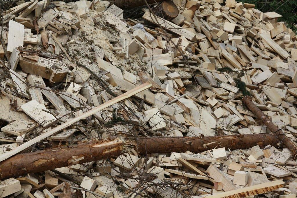 Cosa-sono-le-biomasse-utilizzo-vantaggi-e-svantaggi