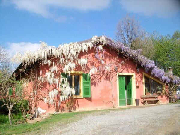 Agriturismo-Cascina-degli-Ulivi